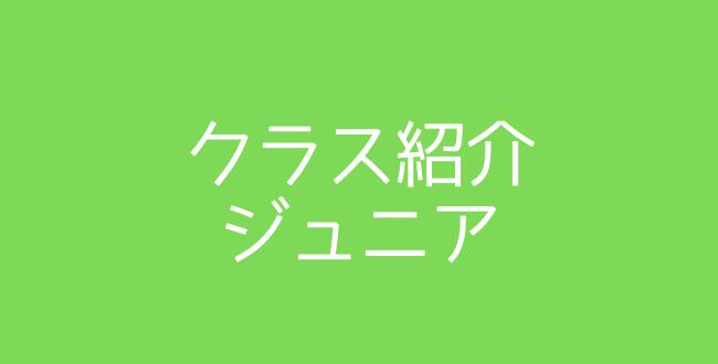 650×330 - クラス紹介(ジュニア)