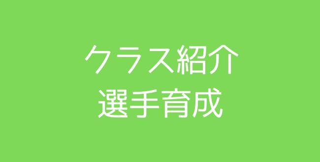 650×330のコピー - クラス紹介(選手育成)